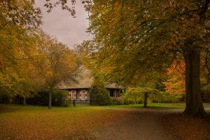 Lovely-house-in-the-forest-free-license-CC0-980x652